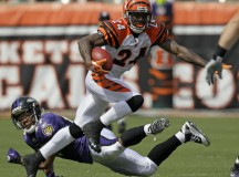 Pacman Jones Arrested for Slapping Woman